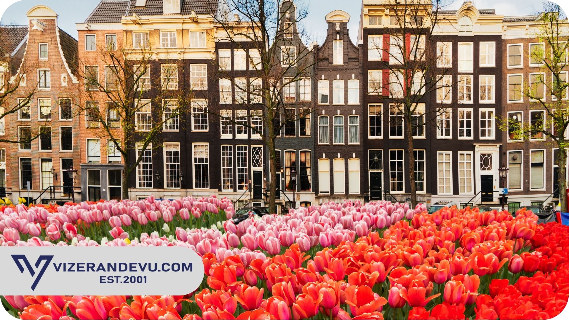Hollanda Tatilde Çalışma Vizesi