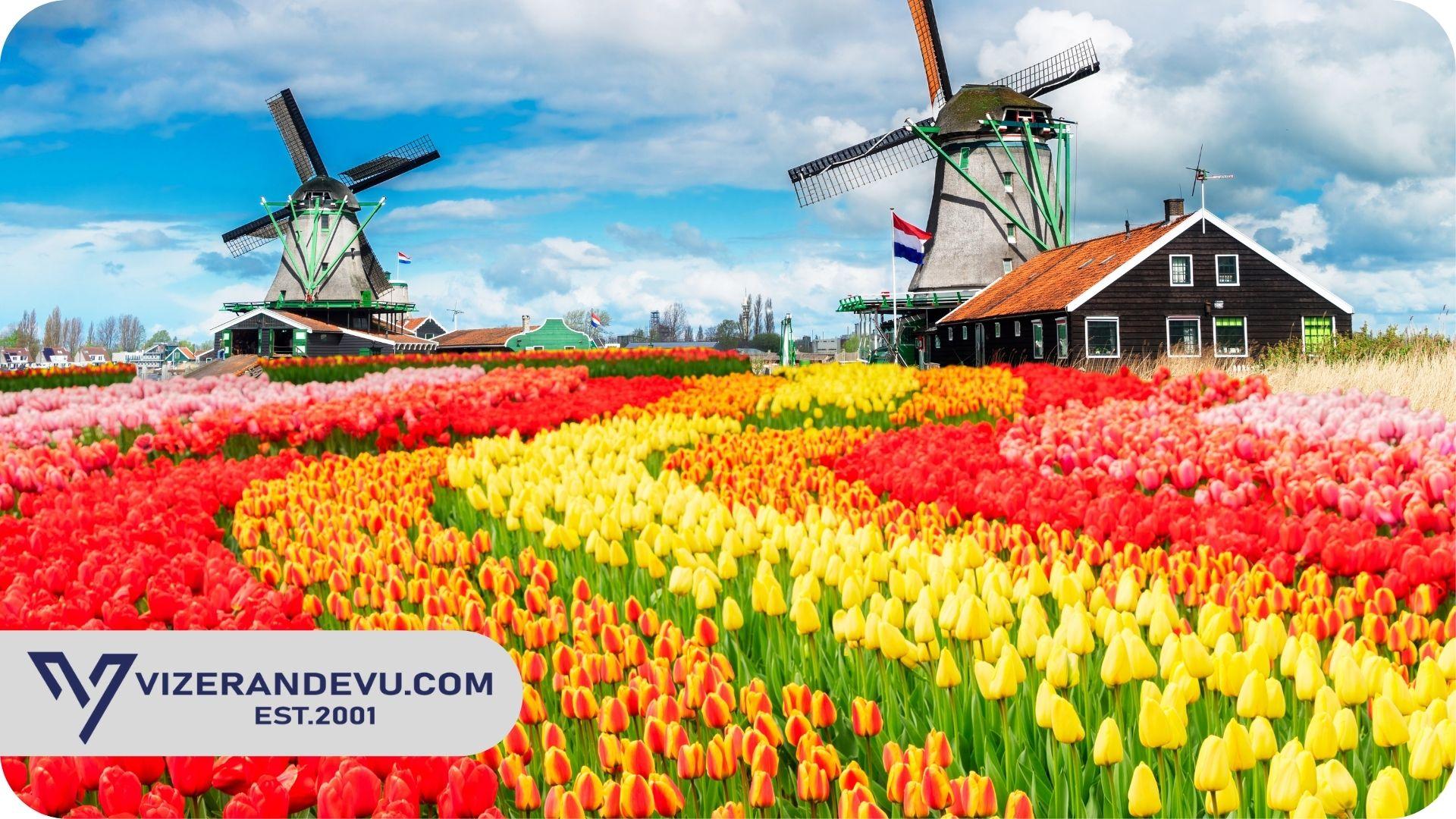 Hollanda Turist Vizesi