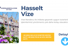 Hasselt Vize